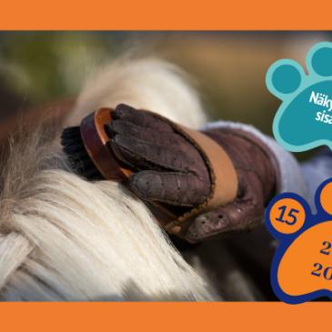 Sisarusten (7-11v) hevostelutapahtuma, Forssa